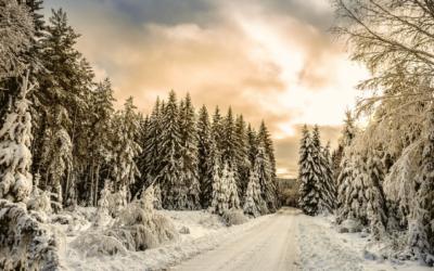 Besinnlichkeit in der Weihnachtszeit | Weihrauch